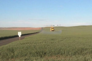 Agricultrural Spraying 5